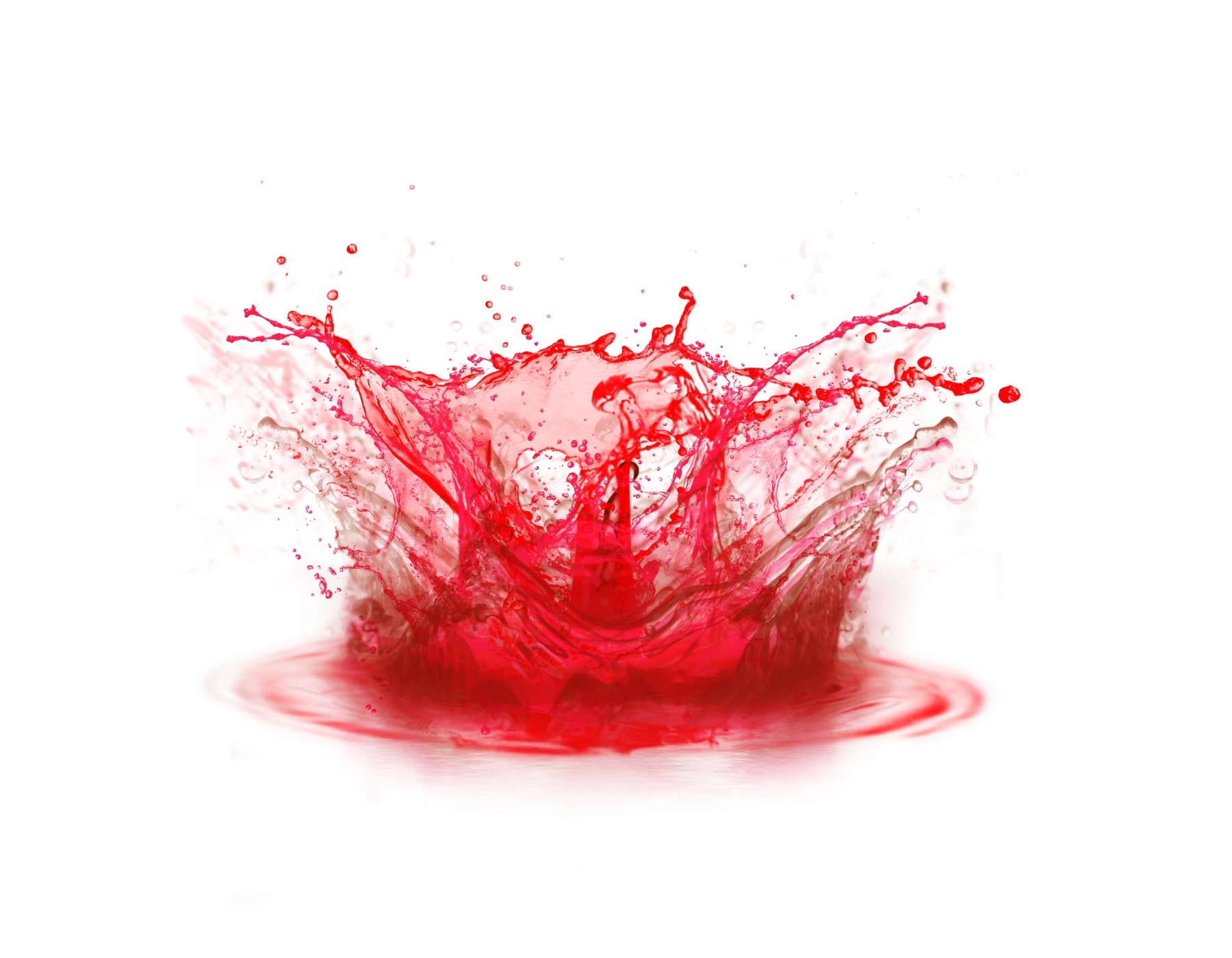 Blood colour drop splashing on white background