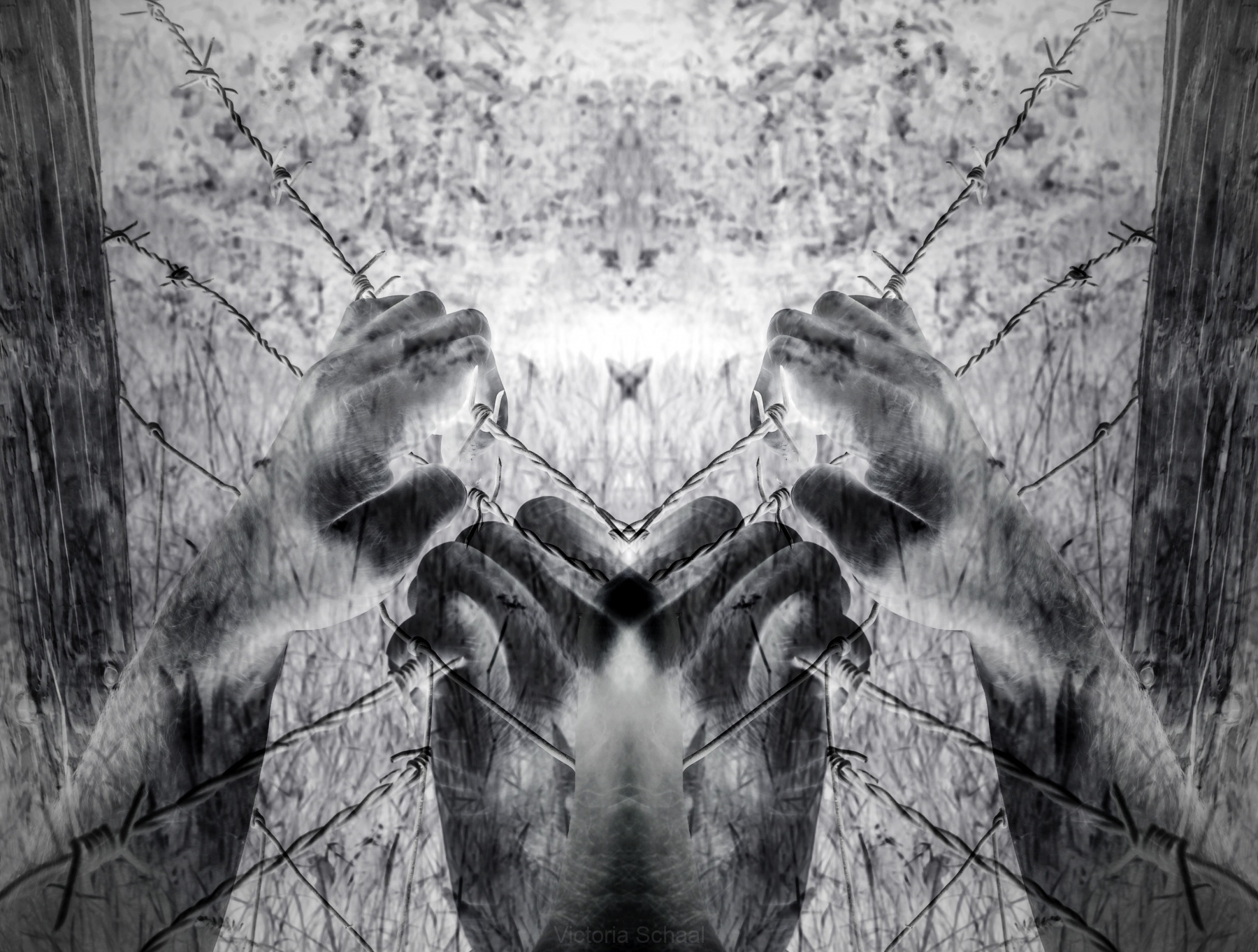 Artistic surreal tortured hands grasping desperately barbed wire (infrared)
